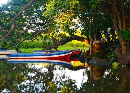 Vapues Nicaragua Tours: A view from the boat tour of Las Isletas.