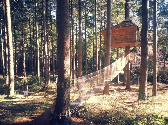 Cabanes als Arbres: Mi cabañita Mallerenga