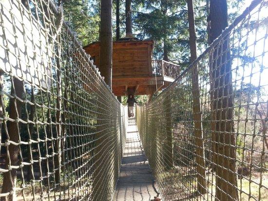 Cabanes als Arbres: Puente para acceder a la cabaña