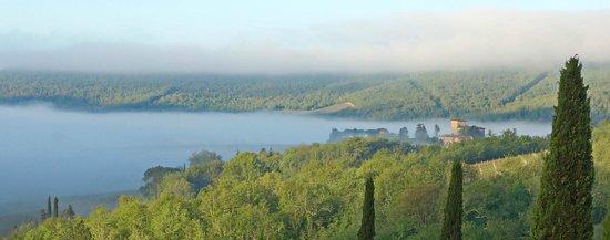Castello di Spaltenna Exclusive Tuscan Resort & Spa : Zimmeraussicht