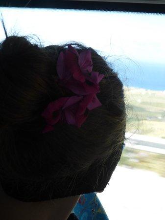 Villa Agnadi Studios: My gift of May Day Flowers