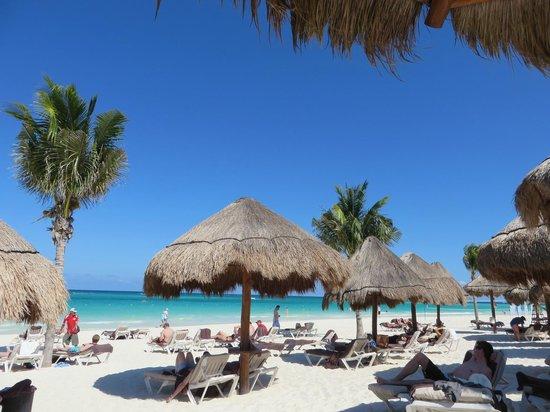 Secrets Maroma Beach Riviera Cancun : :)