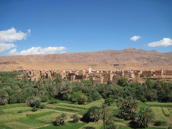 Moroccan Active Adventures : ouarzazate