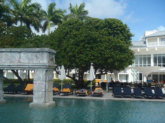 Grand bahama casino peter frampton red rock casino review