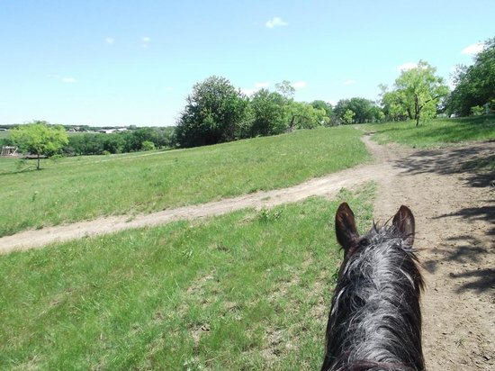 The Beaumont Ranch: Cowboy experience