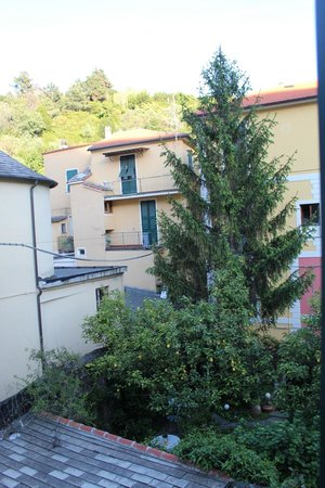 Bellambra - first class rooms and vacation apartment : View of lemon trees from TV room window....wonderful scents and great breeze.