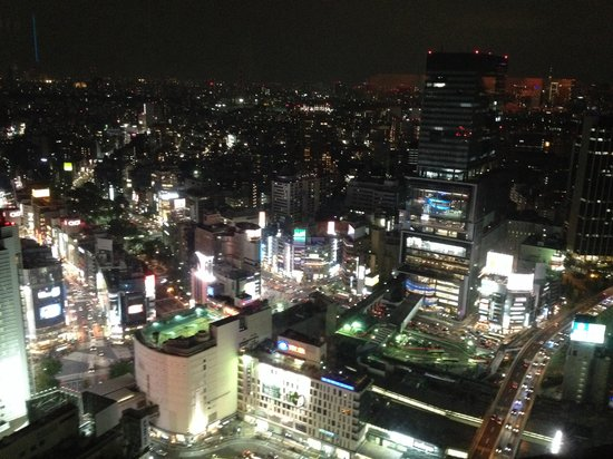 Cerulean Tower Tokyu Hotel: View from my room :)