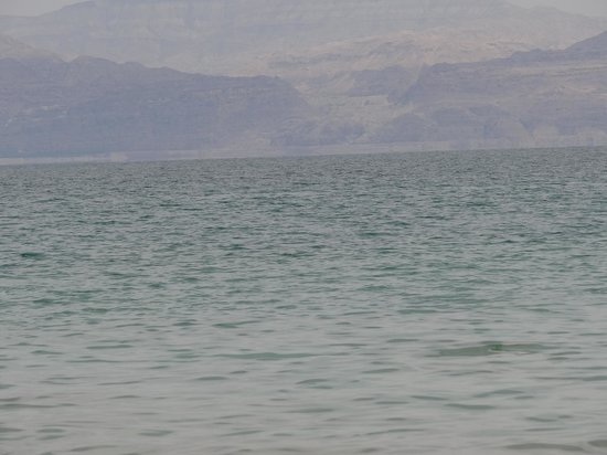 Ein Gedi Spa : Мертвое море