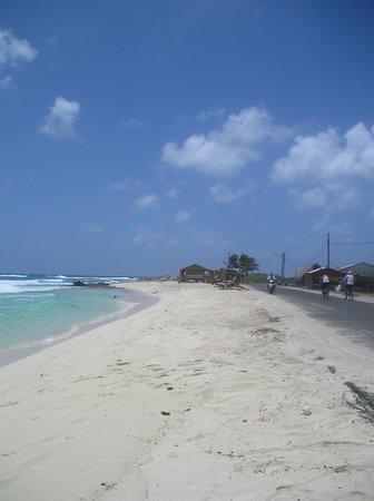 Cocoplum Beach Hotel: Camino a San luis