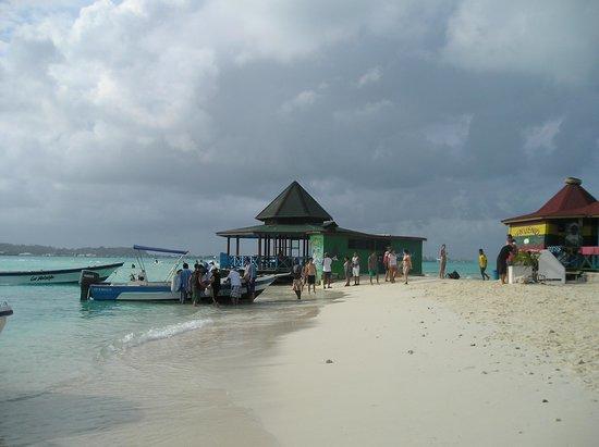 Cocoplum Beach Hotel: Acuario
