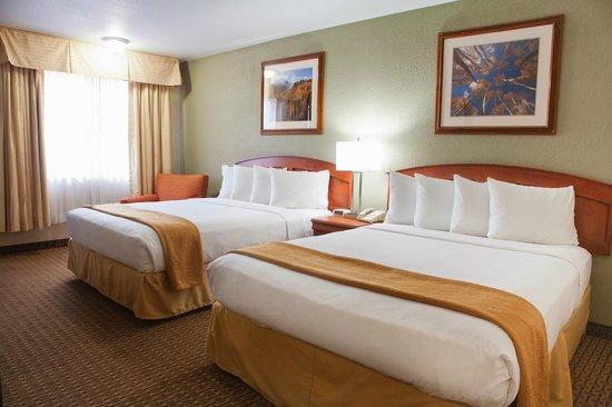 Quality Inn Durango : 2 Queen Guest Room