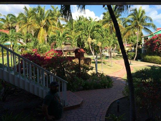 Pineapple Beach Club Antigua : View from garden view