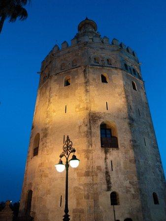 Torre del Oro : vistas