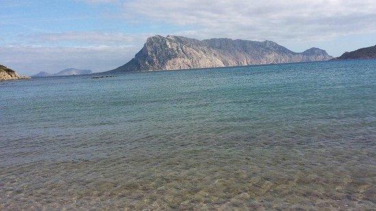 Grande Baia Resort & SPA: isola di Tavolara difronte la spiaggia