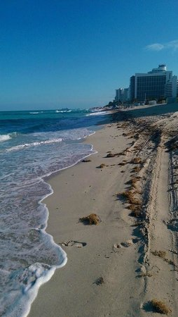 Miami Beach Resort and Spa: Looking south on the beach