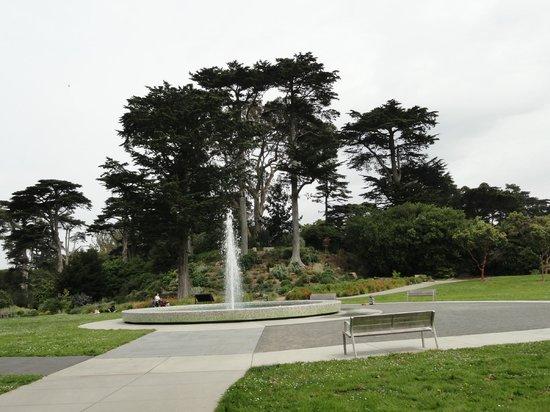 Garden Picture Of San Francisco Botanical Garden San Francisco Tripadvisor