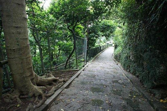 Shrikinjocho Stone-Path Road : 吸い込まれていきそうで、幻想的でした