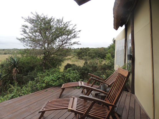 Amakhala Game Reserve: outside our room