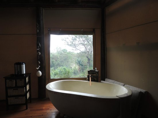 Amakhala Game Reserve: Our room