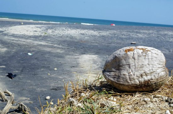Rio Mar Surf Camp : Soft black and white sand beach