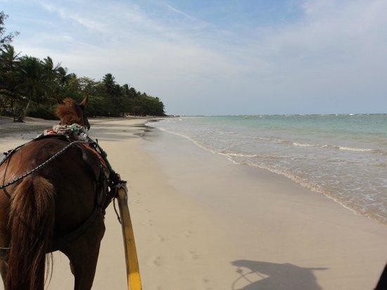 Quinta Praia (Praia do Encanto): Passeio de charrete