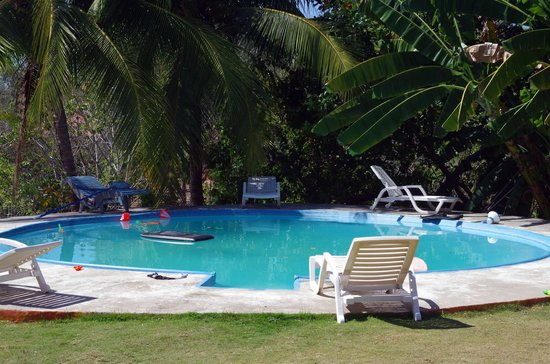 Rio Mar Surf Camp : Pool and skate bowl