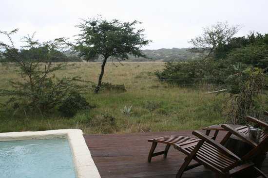 Amakhala Game Reserve: View from our room