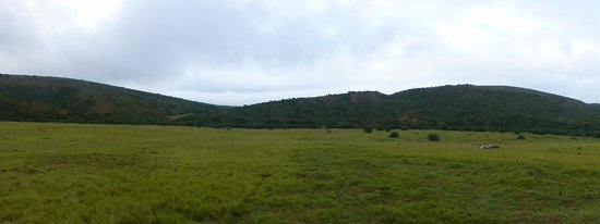 Amakhala Game Reserve: Panoramic views - glorious