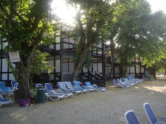 Hedonism II : Renovated Beach rooms