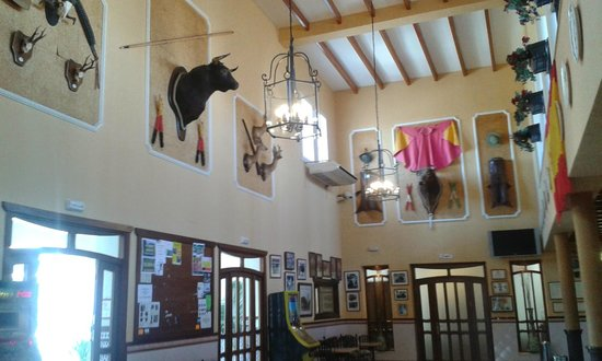 Hotel La Palmosa: Bullfighting memorabilia