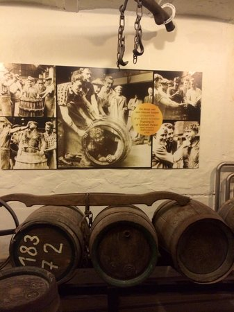 De Halve Maan Brewery : Part of the guided tour