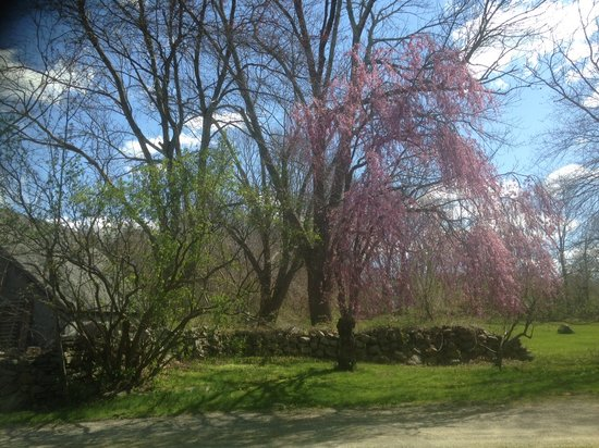 Stonecroft Country Inn : Spring Time