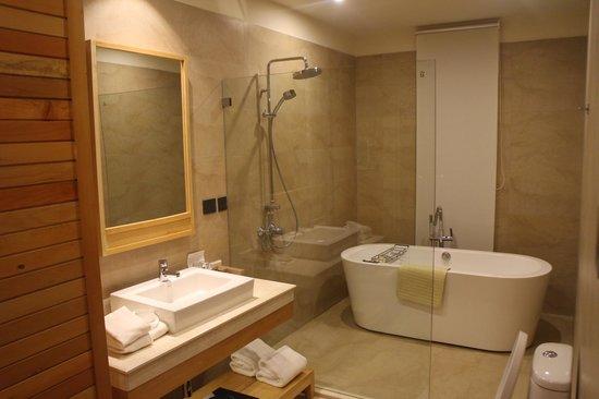 Dhensa Boutique Resort: Bathroom