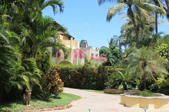 Casa Velas: Grounds