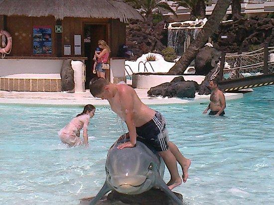 H10 Suites Lanzarote Gardens: swiming