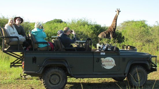 Thula Thula Exclusive Private Game Reserve and Safari Lodge: Game drive at Thula Thula Game Reserve