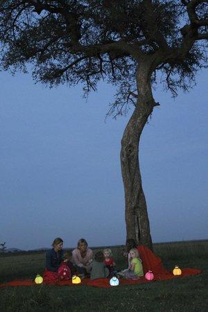Naboisho Camp, Asilia Africa: Acacia tree