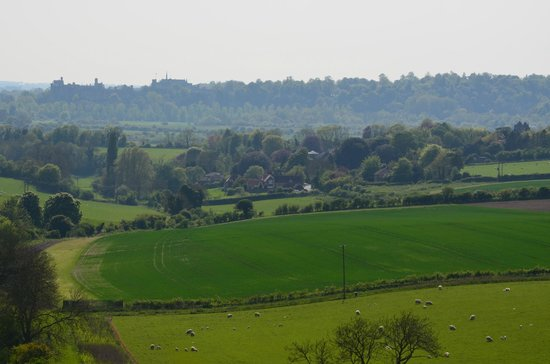 The George at Burpham: View of Burpham with Arundel Castle in the background