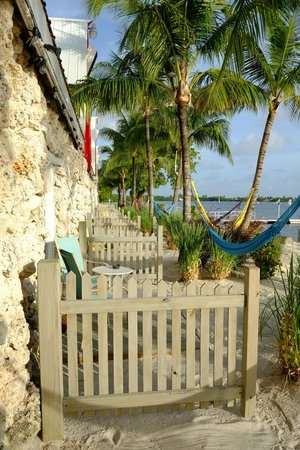 Ibis Bay Beach Resort : Seaview Room