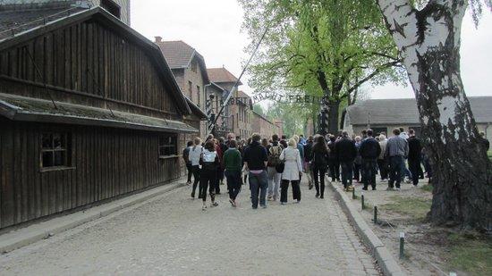 Krakow Tours: Auschwitz
