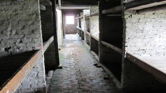 Krakow Tours: Block 16a