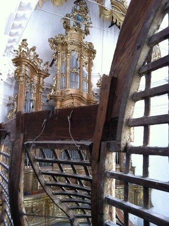 Chiesa di San Nicolo All'Arena: Il bellissimo organo