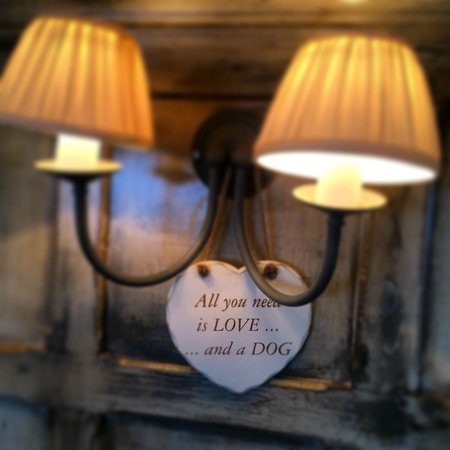 The Old House: All you need is a dog...
