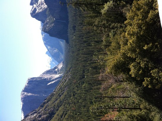 Discover Yosemite : pic from one of our stops