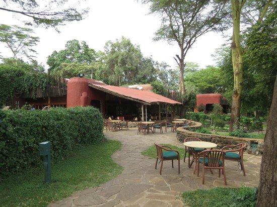 Amboseli Serena Safari Lodge: Terrace