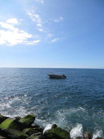 Pestana Carlton Madeira: океан