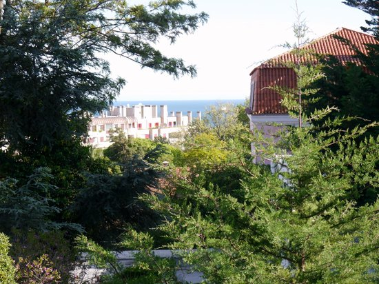 Amazonia Estoril Hotel: See view