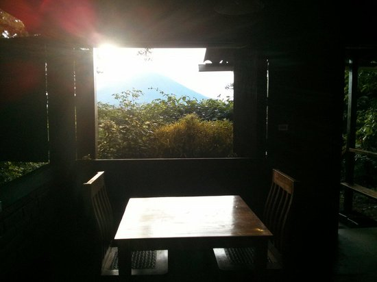 La Via Verde - Organic Farm and B&B: View from the dining table in the casita.