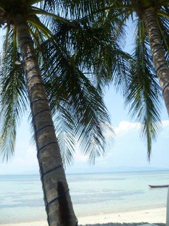 B52 Beach Resort: Blick vom Pool aus