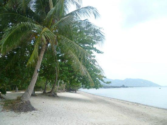 B52 Beach Resort: ...und nach links